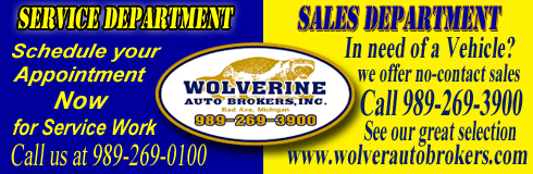 Wolverine Auto Brokers